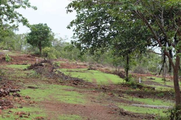 3000 sqft, Plot in Builder Zen Habitats Dapoli, Ratnagiri at Rs. 8.2500 Lacs