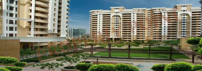 3110 sqft, 4 bhk Apartment in Vipul Belmonte Sector 53, Gurgaon at Rs. 3.5000 Cr