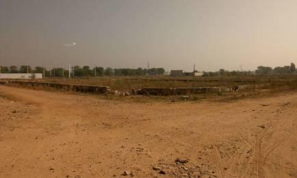1944 sqft, Plot in Builder Krishna city Saipura Diggi Road, Jaipur at Rs. 24.8400 Lacs