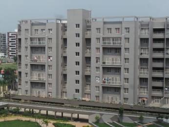 800 sqft, 2 bhk Apartment in JKG Purvarang Wagholi, Pune at Rs. 45.0000 Lacs