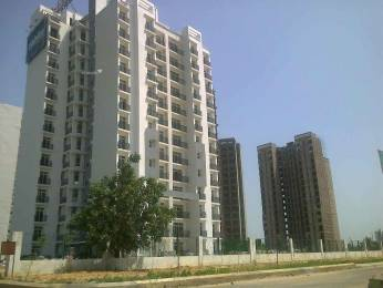 1775 sqft, 3 bhk Apartment in Shri Celebrity Greens Sushant Golf City, Lucknow at Rs. 58.5775 Lacs