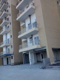 1385 sqft, 3 bhk Apartment in Ajnara Homes Sector 16B Noida Extension, Greater Noida at Rs. 52.8000 Lacs