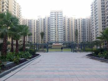 955 sqft, 2 bhk Apartment in Nirala Estate Techzone 4, Greater Noida at Rs. 35.0000 Lacs