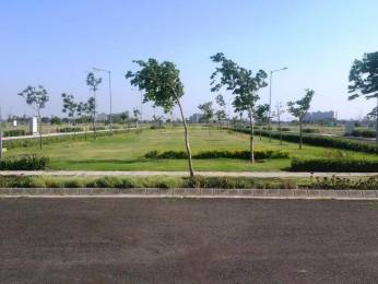 900 sqft, Plot in Builder Ecocity New Chandigarh Mullanpur, Chandigarh at Rs. 45.0000 Lacs