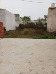 880 sqft, Plot in Builder amrit vihar Bypass Road, Jalandhar at Rs. 7.8600 Lacs