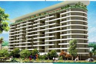 1625 sqft, 3 bhk Apartment in Omni Amayra Greens Daun Majra, Mohali at Rs. 41.0000 Lacs