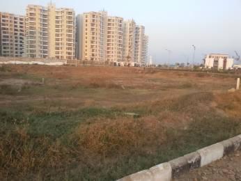 1728 sqft, Plot in TDI TDI City 2 Plots Sector 110 Mohali, Mohali at Rs. 38.4006 Lacs