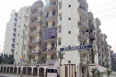 475 sqft, 1 bhk Apartment in  Maya Garden City Nagla, Zirakpur at Rs. 16.9000 Lacs