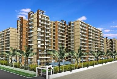 2072 sqft, 3 bhk Apartment in Builder Beverly Golf Avenue Sector 65, Mohali at Rs. 1.2846 Cr