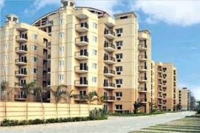 2300 sqft, 3 bhk Apartment in ATS Golf Meadows Lifestyle Ashiana Colony, Dera Bassi at Rs. 78.0007 Lacs
