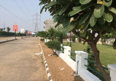 1008 sqft, Plot in Divine Residential Plots Phase 3 Sector 115 Mohali, Mohali at Rs. 19.6003 Lacs