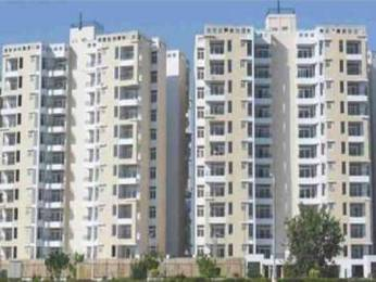 1771 sqft, 3 bhk Apartment in TDI Wellington Heights Extension Sector 118 Mohali, Mohali at Rs. 60.0002 Lacs