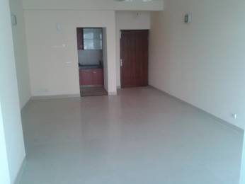 1110 sqft, 2 bhk Apartment in Omaxe Grand Sector 93B, Noida at Rs. 58.0000 Lacs