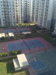 1100 sqft, 2 bhk Apartment in Builder Project Sector93 B Noida, Noida at Rs. 16500
