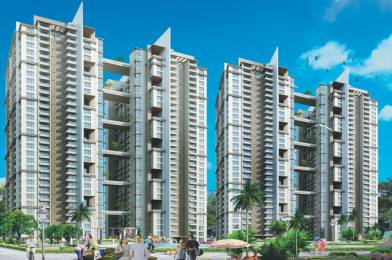 1725 sqft, 3 bhk Apartment in Paras Tierea Sector 137, Noida at Rs. 71.0000 Lacs