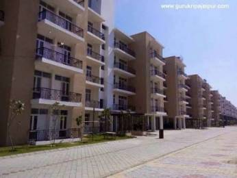 1600 sqft, 3 bhk Apartment in Omaxe Executive Homez Ajmer Road, Jaipur at Rs. 32.0000 Lacs