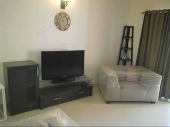 2125 sqft, 3 bhk Apartment in Vascon Marigold Kalyani Nagar, Pune at Rs. 70000