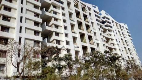 1300 sqft, 3 bhk Apartment in OM The Island Wakad, Pune at Rs. 84.0000 Lacs