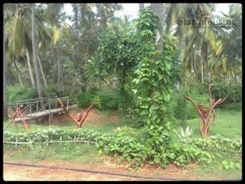 4360 sqft, Plot in Jemi Holiday Resort Natham, Madurai at Rs. 4.5000 Lacs
