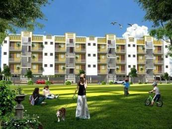 910 sqft, 3 bhk Apartment in Builder Project Kishangarh, Chandigarh at Rs. 23.9000 Lacs