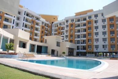 1856 sqft, 3 bhk Apartment in Milan Milan Heights Apartments Pipliyahana, Indore at Rs. 58.0000 Lacs