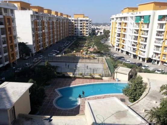 2575 sqft, 4 bhk Apartment in Milan Milan Heights Apartments Pipliyahana, Indore at Rs. 87.5500 Lacs