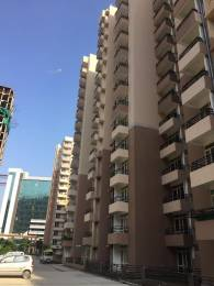1225 sqft, 2 bhk Apartment in Today Homes Ridge Residency Sector 135, Noida at Rs. 51.4500 Lacs