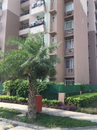 1075 sqft, 2 bhk Apartment in Today Homes Ridge Residency Sector 135, Noida at Rs. 45.0000 Lacs