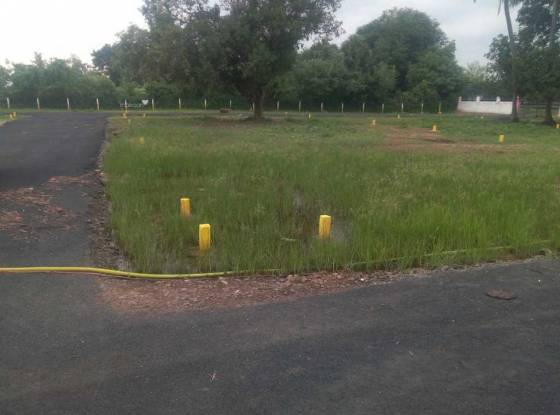 1750 sqft, Plot in Builder Project Singaperumal Koil, Chennai at Rs. 19.2500 Lacs