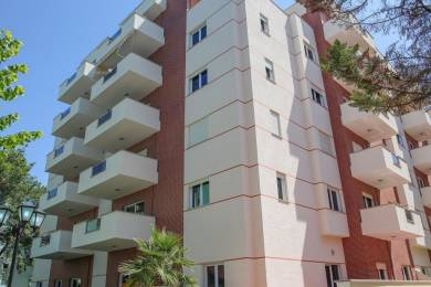 1550 sqft, 3 bhk Apartment in Builder aashayana pro Lalpur Road, Ranchi at Rs. 16000