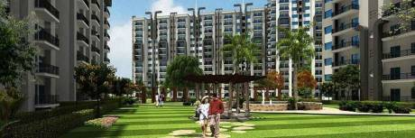1340 sqft, 3 bhk Apartment in Armed Forces Officials Welfare Organisation Raksha Addela Sector 16C Noida Extension, Greater Noida at Rs. 43.0000 Lacs