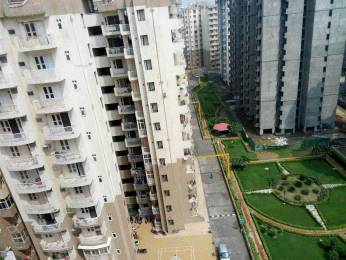 1590 sqft, 3 bhk Apartment in SVP Gulmohur Garden Raj Nagar Extension, Ghaziabad at Rs. 50.0000 Lacs