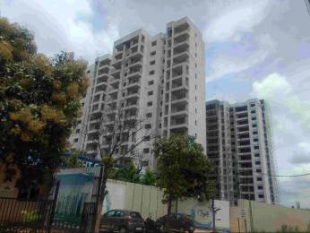 1060 sqft, 2 bhk Apartment in MJR Clique Hydra Electronic City Phase 1, Bangalore at Rs. 54.0000 Lacs
