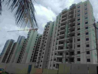 1300 sqft, 2 bhk Apartment in MJR Clique Hydra Electronic City Phase 1, Bangalore at Rs. 59.8000 Lacs
