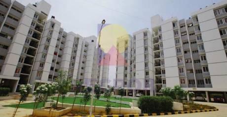 540 sqft, 1 bhk Apartment in Builder VBHC Palmhaven Phase 2 Kengari Kengeri, Bangalore at Rs. 21.8500 Lacs
