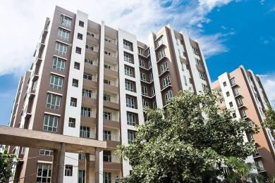 1375 sqft, 2 bhk Apartment in Signum Cloud 9 Mominpore, Kolkata at Rs. 99.0000 Lacs