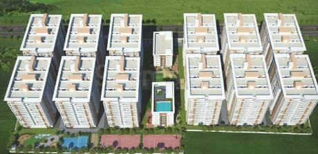 1500 sqft, 3 bhk Apartment in MVV MVV City Pothinamallayya Palem, Visakhapatnam at Rs. 60.0000 Lacs