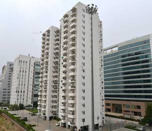 1125 sqft, 2 bhk Apartment in Builder Project DLF CITY, Gurgaon at Rs. 1.1500 Cr