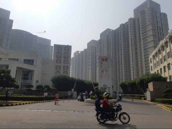 2704 sqft, 4 bhk Apartment in DLF Park Place Sector 54, Gurgaon at Rs. 4.0000 Cr