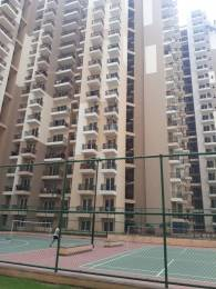 1035 sqft, 2 bhk Apartment in Gaursons and Saviour Builders Gaur City 2 12th Avenue Sector 16C Noida Extension, Greater Noida at Rs. 40.0000 Lacs