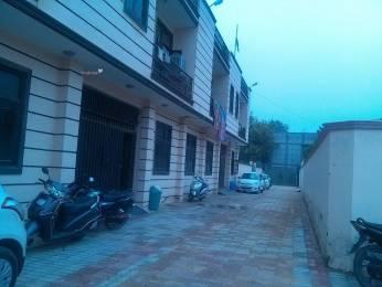 700 sqft, 1 bhk BuilderFloor in Builder Project Chattarpur, Delhi at Rs. 13000