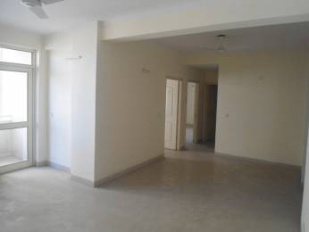 1600 sqft, 3 bhk Apartment in Avalon Gardens Sector 22 Bhiwadi, Bhiwadi at Rs. 31.9500 Lacs