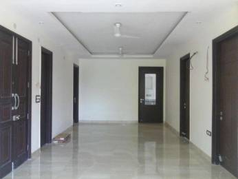 1200 sqft, 2 bhk BuilderFloor in Builder Project Sector 40, Gurgaon at Rs. 20000