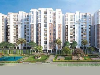 940 sqft, 2 bhk Apartment in DTC Southern Heights Joka, Kolkata at Rs. 28.2000 Lacs