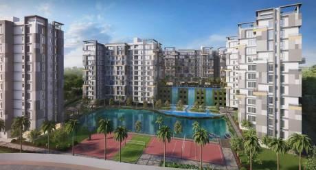 960 sqft, 2 bhk Apartment in Reputed Aangan Dum Dum, Kolkata at Rs. 52.8000 Lacs
