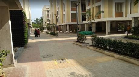 1061 sqft, 3 bhk Apartment in Tirupati Paradise Sonarpur, Kolkata at Rs. 31.4960 Lacs