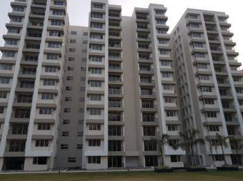 1650 sqft, 3 bhk Apartment in Salarpuria Sattva Silver Oak Estate Prive Rajarhat, Kolkata at Rs. 87.3015 Lacs