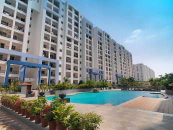 2100 sqft, 3 bhk Apartment in Adarsh Palm Retreat Bellandur, Bangalore at Rs. 40000
