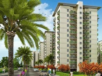1250 sqft, 3 bhk Apartment in DLF Maiden Heights at My Town Jigani, Bangalore at Rs. 18000