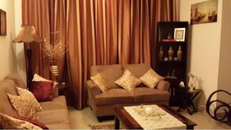 1614 sqft, 3 bhk Apartment in Purva Purva Venezia Yelahanka, Bangalore at Rs. 40000
